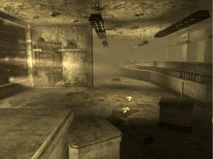 Fallout 3 Store