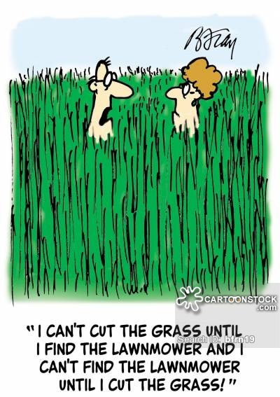 'I can't cut the grass until I find the lawnmower and I can't find the lawnmower until I cut the grass!'