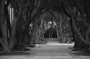 haunted-walkway-14431078419Oz